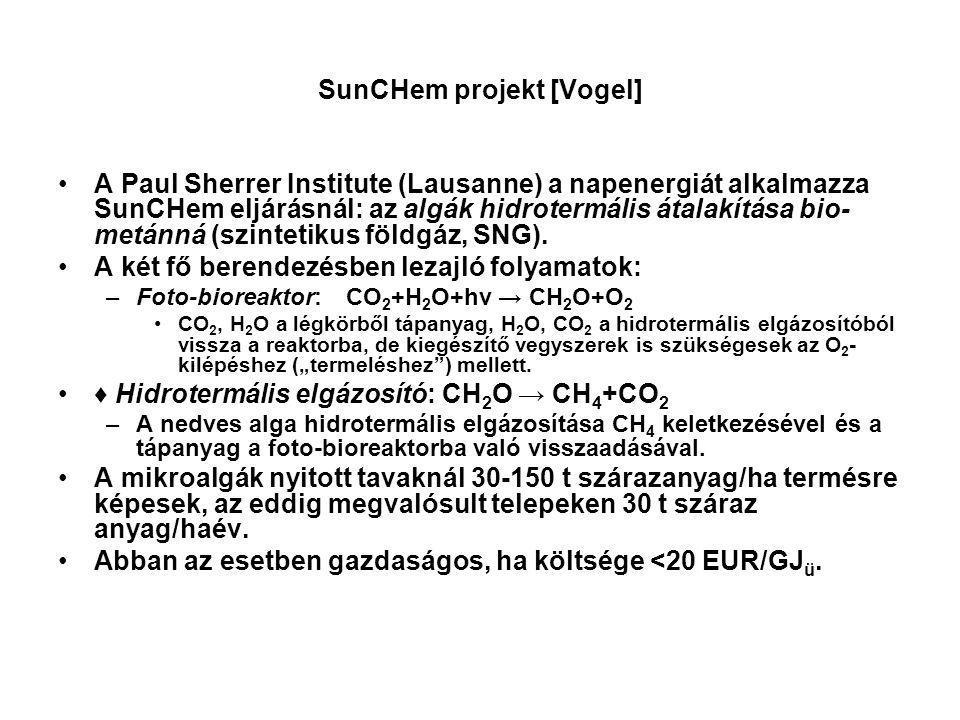 SunCHem projekt [Vogel]